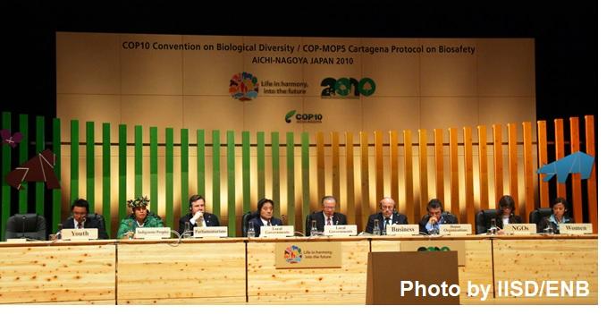 国連生物多様性の10年(UNDB)市民ネットワーク