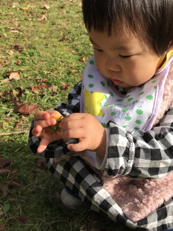 乳幼児自然知育あそび ecocorokids